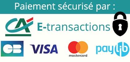 Paiement sécurisé e-transaction du Crédit Agricole