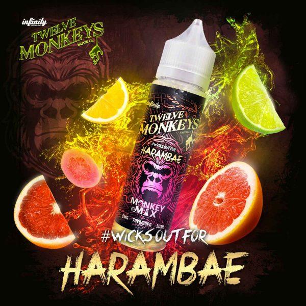 E-liquide Harambae de Twelve Monkeys